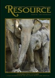 resource-elephants-113
