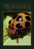 resource-ladybug-113